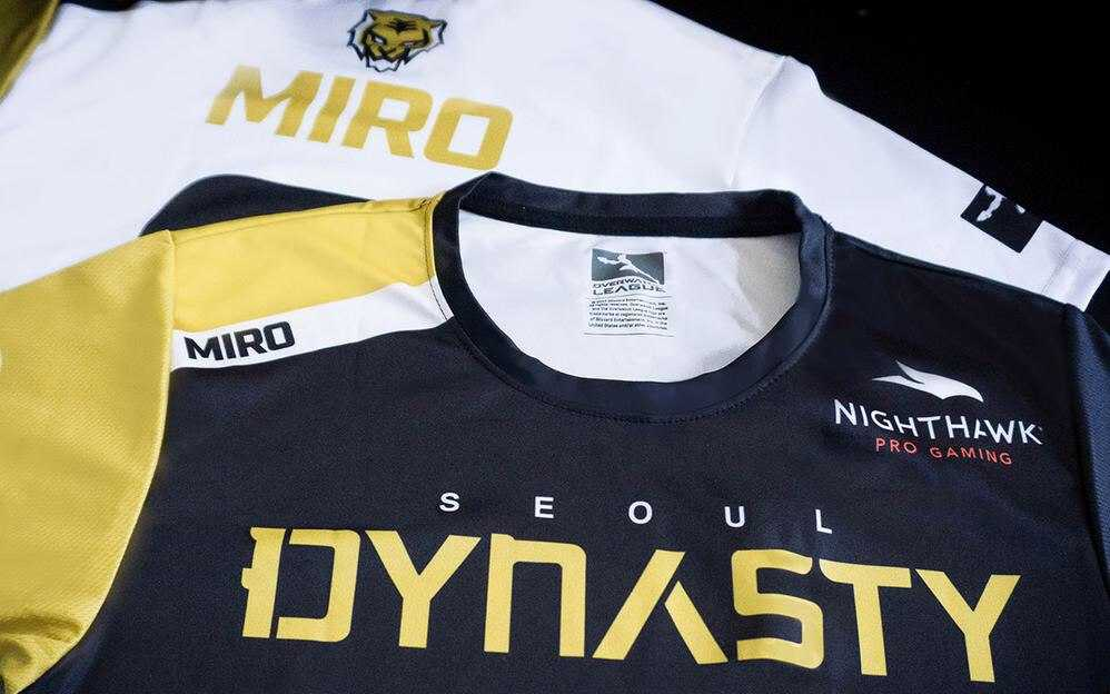 Seoul Dynasty Nighthawk